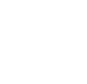 W.F. Naugle & Sons, Inc.